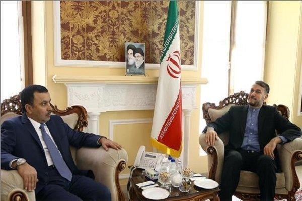 Amir-Abdollahian meets with Qatar's envoy to Iran