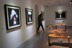 Photo, sculpture gallery dedicated to Hormuz gazelles