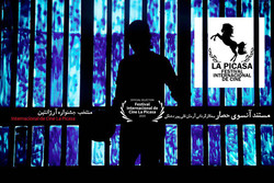 'Beyond the Face' goes to Argentina's La Picasa Filmfest.