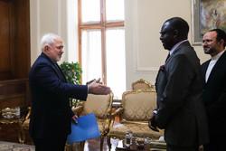 سفير مالي الجديد يقدم اوراق اعتماد لظريف/صور