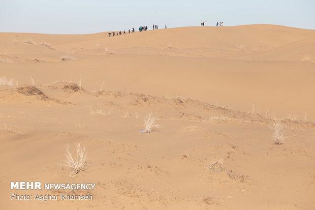 Abuzeydabad desert tour