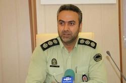 ۶ سارق حرفهای کابل برق در عسلویه دستگیر شدند
