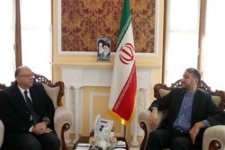 Iran, Egypt officials meet to discuss bilateral issues