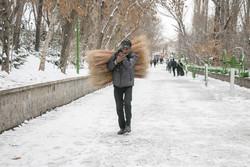 بارش نخستین برف زمستانی همدان را سفیدپوش کرد