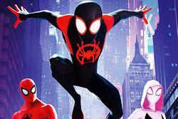 هدیه «مرد عنکبوتی» برای طرفداران/ فیلمنامه کامل را دانلود کنید