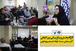 برگزاری کارگاه «بازاریابی بینالمللی آثار سینمایی» در بوشهر