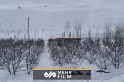 Avalanche hits a village in Far East Russia