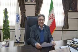 گلایه از عدم برند سازی زعفران ایرانی/ هراج طلای سرخ هنر نیست
