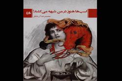 کتاب جدید محمدرضا آریانفر چاپ شد/قصه موازی زندگی مائده و مدهآ