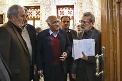 دیدار جمعی از شهرداران کلانشهرها با رئیس مجلس شورای اسلامی