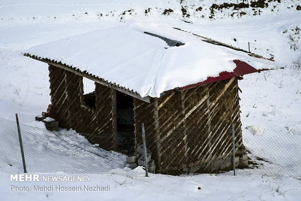 Eye-catching beauty of Heyran pass in winter