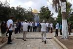 تعرض دهها شهرک نشین صهیونیست به مسجد الاقصی