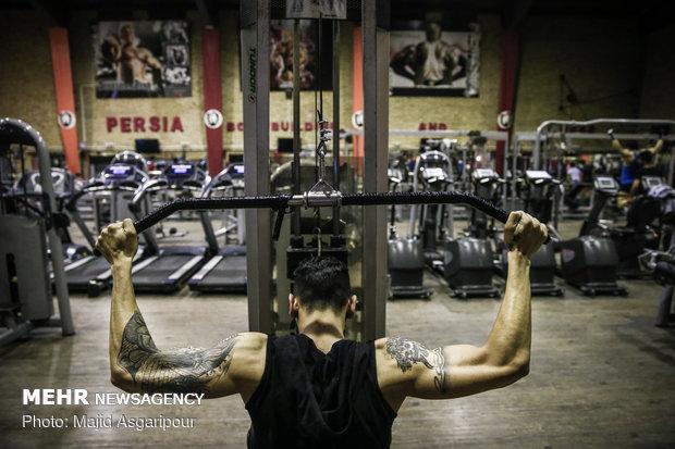 در میان جوانان بخصوص ورزشکارانی که در رشته پرورش اندام فعالیت میکنند، تتو رواج گسترده ای دارد.