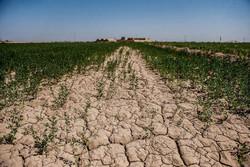 میزان فرسایش خاک در غرب مازندران ۱۱ تن در هکتار است