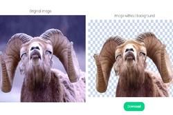 حذف سریع پس زمینه عکس ها با هوش مصنوعی