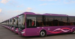 Tehran transport fleet to add 13 articulated buses