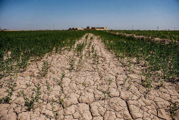 «توقف فرسایش خاک، حفظ آینده ما» شعار روز جهانی خاک