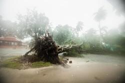 برطانیہ میں طوفان ایرک کے باعث 2 افراد ہلاک
