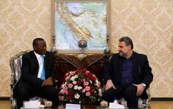 South Africa backs JCPOA: ambassador