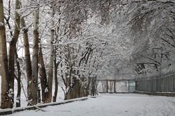 آغاز بارش برف و باران در غرب اصفهان از امروز