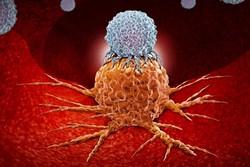 نابودی سلول های سرطانی با تلفیق داروهای دو سرطان