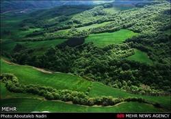 ۱۵ پهنه از جنگلهای هیرکانی ثبت جهانی میشود
