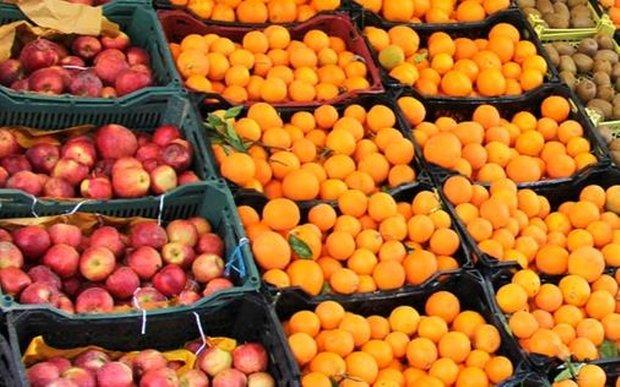 40 هزار تن پرتقال ویژه شب عید ذخیرهسای شد
