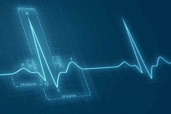 کشف چگونگی ارسال سیگنال از قلب آسیب دیده به سلولهای مغز استخوان