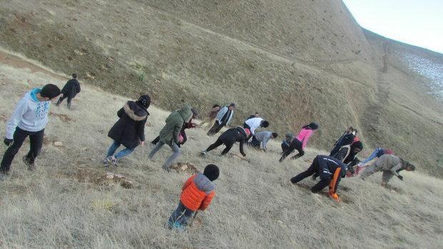 کاشت بذر و درخت، فرهنگسازی و پاکسازی برای حفظ محیط زیست