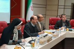 ۱۴۱ میلیارد تومان در اشتغال روستایی استان قزوین هزینه شده است