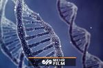 همه آنچه درباره DNA باید بدانید