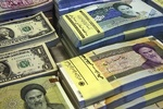 Role of 'rial' to be strengthened in global exchanges