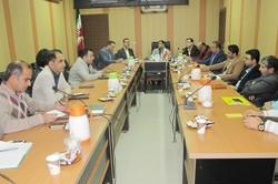 هیچگونه بیماری در مزارع پرورش میگوی استان بوشهر گزارش نشده است