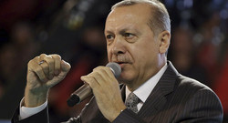 Erdogan says plans to meet with Putin, Rouhani