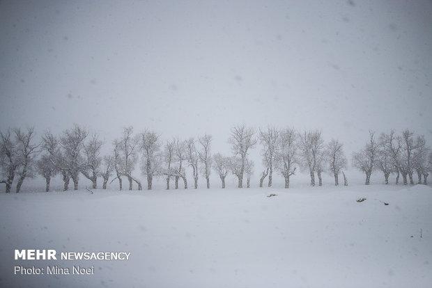 """عمليات ازالة الثلج عن الطرق في محافظة """"آذربيجان الشرقية"""""""