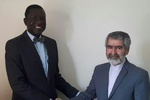 Iran, Senegal call for non-instrumental use of OIC
