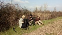 جشن گل نرگس، سرشماری پرندگان و درختکاری در قرار سبز چهارم دی ماه