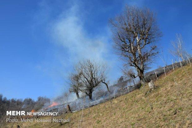 Wildefire in Astara