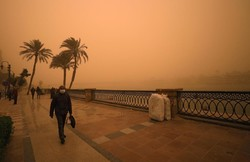 Sand and Dust Storms Coalition launched at COP14