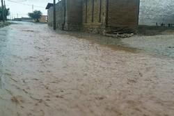 خسارت ۲۰۰ میلیونی سیلاب به شبکههای آب روستایی پلدختر