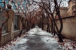 خسارت ۶ میلیارد تومانی تگرگ به باغات رودبارقصران