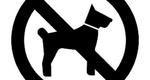 آزادی شهروندان؛ قربانی آزادی سگهای شکاری/ مجری مواد ۵۲۲ و ۶۸۸ قانون مجازات اسلامی کیست؟