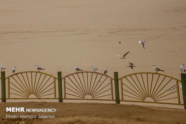 Dust storm envelops Ahvaz