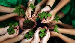 'Environmental education must be acquired at earlier ages'