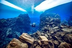 برترین عکس های دنیای زیر آب در سال ۲۰۱۸ را تماشا کنید