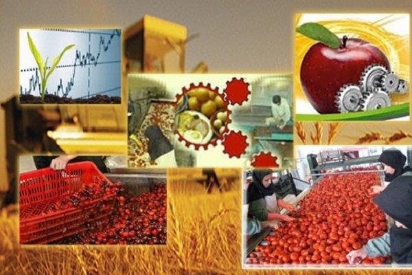 ظرفیت صنایع تبدیلی وغذایی سیستان و بلوچستان ۱۵ هزارتن افزایش یافت