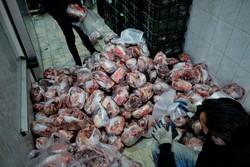 توزیع گوشت الاغ در کشور؟/ التهاب چگونه به انحراف میانجامد