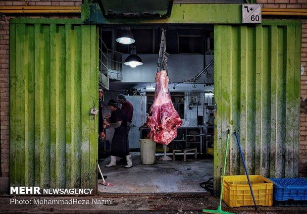 توزیع «گوشت» تنظیم بازار