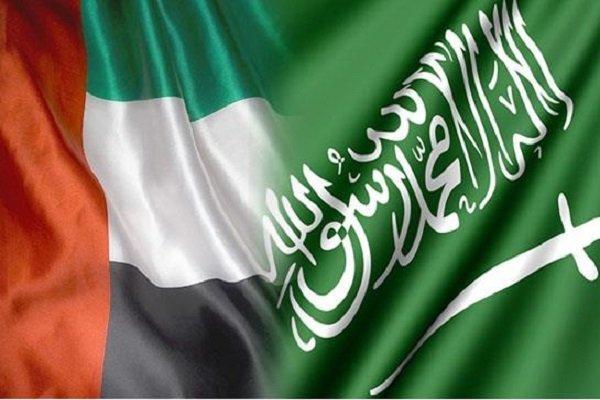 Exploring Saudi-Emiratis disagreements on Yemen