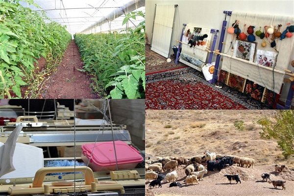 150,000 more jobs added in Iran's rural areas since last year